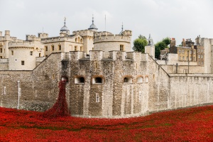 Red Ceramic Poppies at the Tower of London